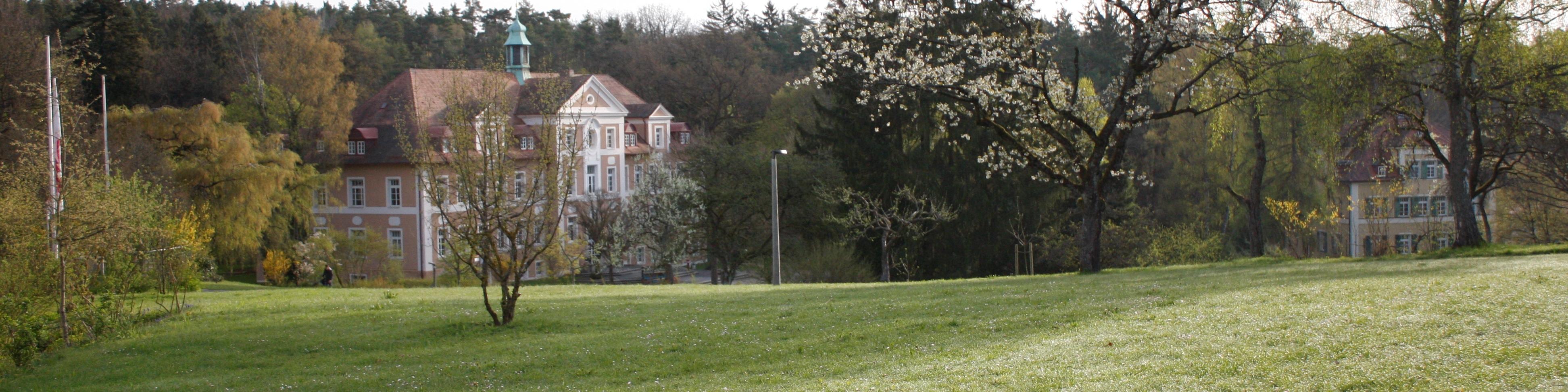 Rummelsberg im Frühling